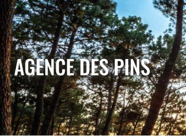 AGENCE DES PINS