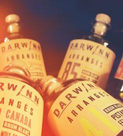 DARWINN & CO. RHUMERIES